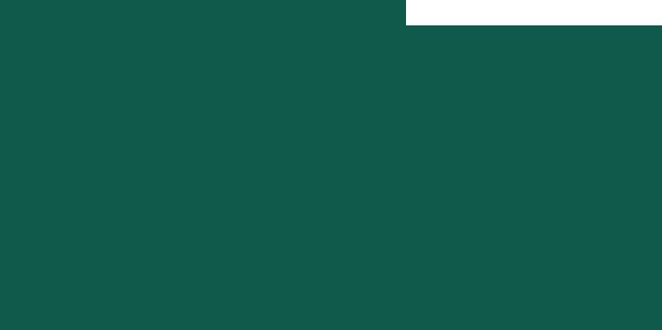 CFO Logo Color